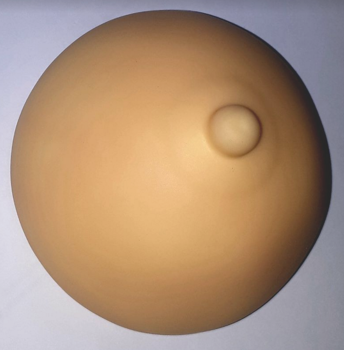 3D breast for medical micropigmentation